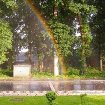 Regenbogen im Sternbusch